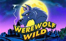 Werewolf Wild Slots