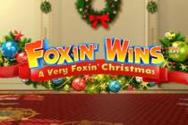 Foxin wins christmas